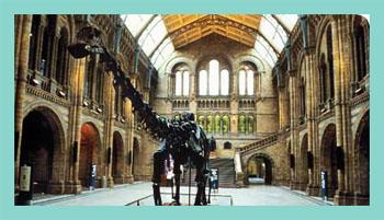 museu-natural-historia-londres