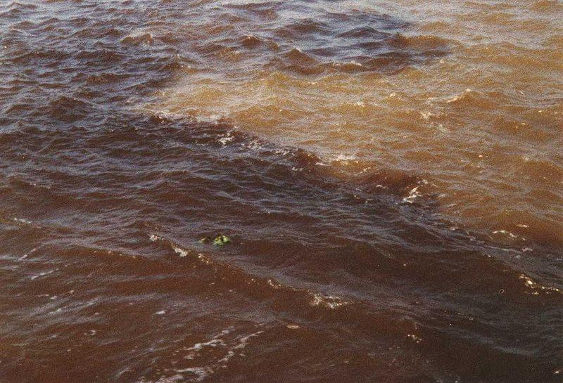 Rio Negro e Solimões - Encontro das Águas