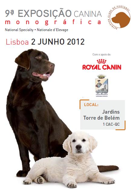 exposicao-canina-Monografica-Retrievers