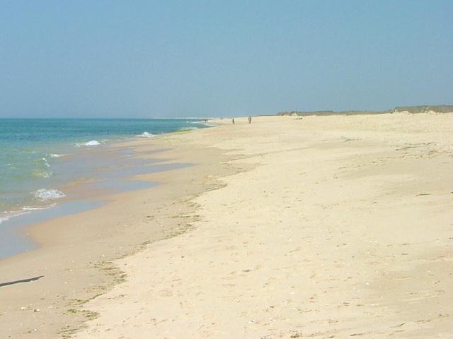 Praia do Barril – Foto de Alexmol – Wikipédia
