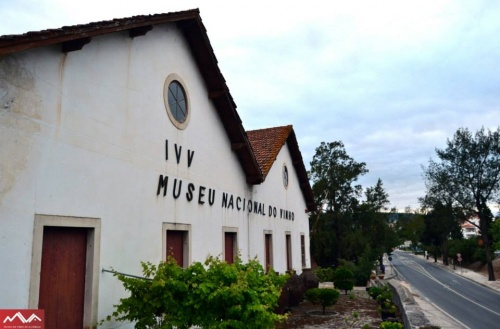 Museu Nacional do Vinho - Foto Lifecooler ©
